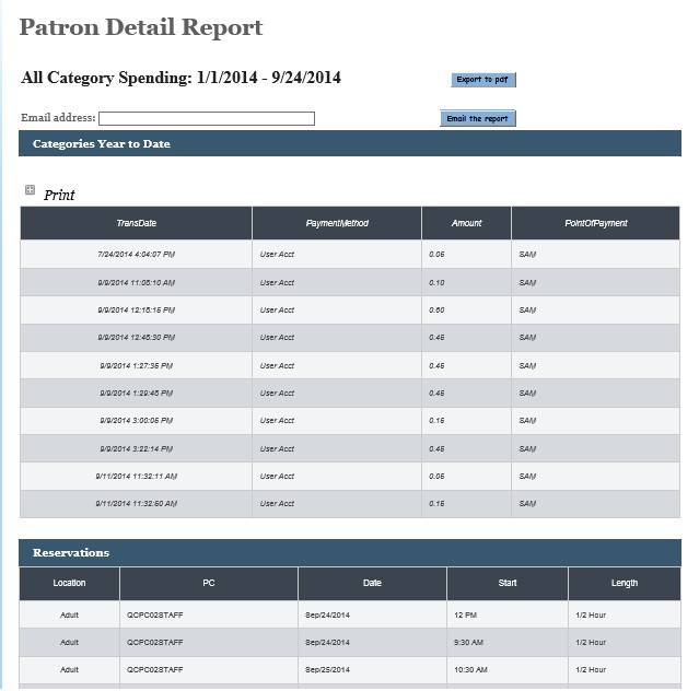 patrondetail-report